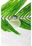 Fresh Parfüm 100 Ml